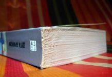 Книга Дугги Бримсона Кое-что о Билли - Stone Forest