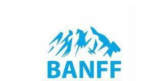 banff world media festival - Stone Forest