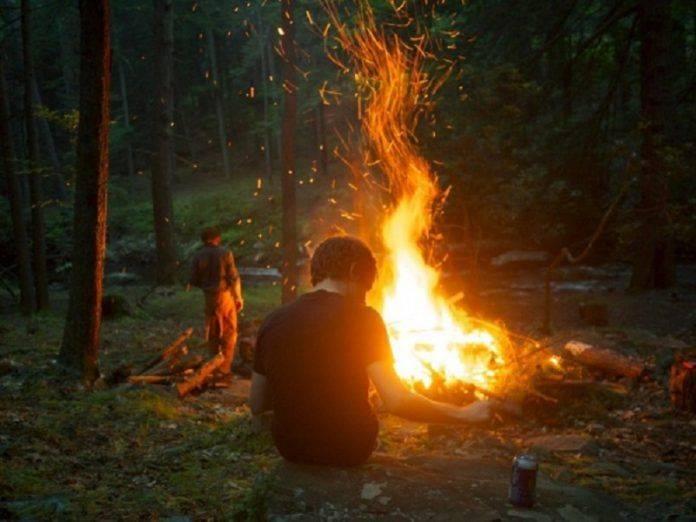 В лесу у костра - Stone Forest