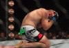 UFC 159 Jones vs Sonnen - Stone Forest
