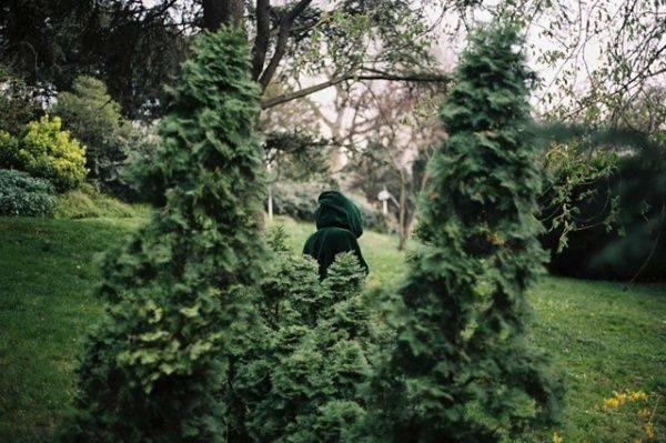 Фотограф Мельхиор Терсен - Stone Forest