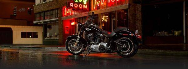 Harley-Davidson Fat Boy - Stone Forest