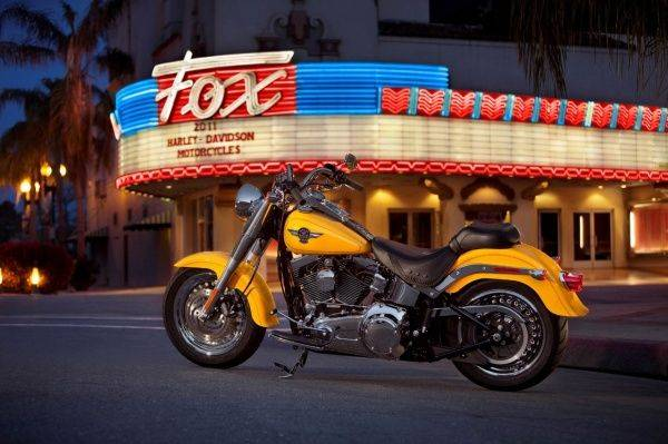 Harley-Davidson Fat Boy - Stone Forest