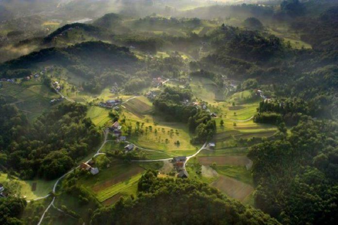 Долина с высоты птичьего полета - Stone Forest