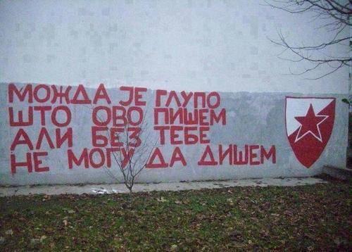 crvena_zvezda_3