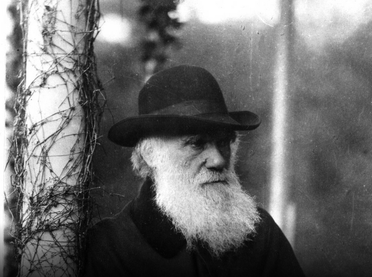 8-борода-чарльз-дарвин
