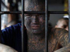 Татуировки на американской зоне - Stone Forest