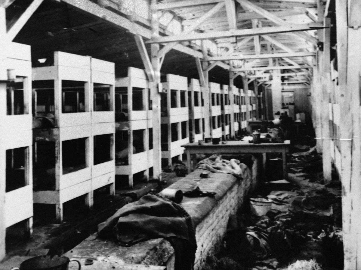 Концентрационный-лагерь-Аушвиц-каким-его-увидела-Красная-Армия-4