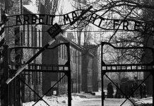 Вход в Аушвиц глазами советских солдат - Stone Forest