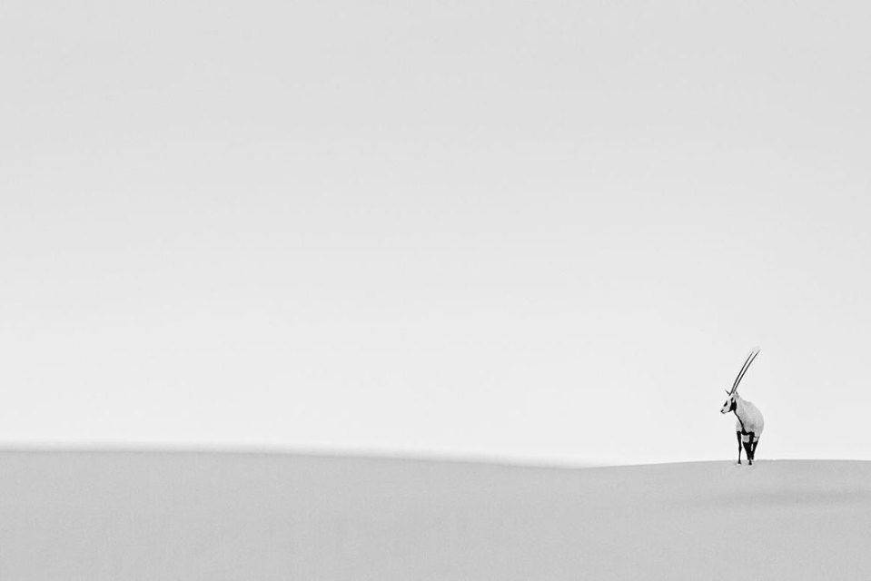 Лучшие-фотографии-2014-года-по-тематике-Путешествия-3