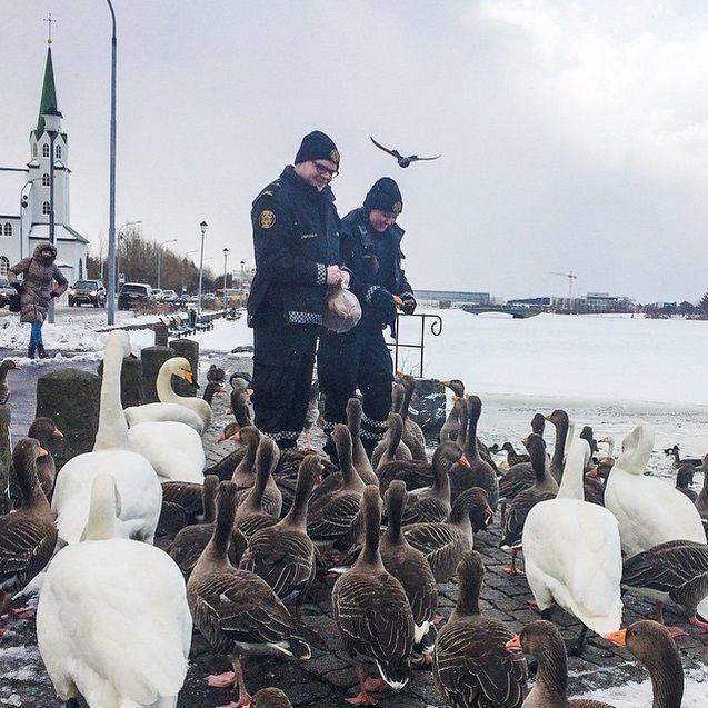 Instagram-исландских-полицейских-5