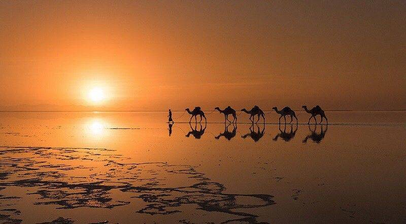 Фотографии National Geographic = Stone Forest