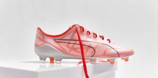 Puma evoSPEED - Stone Forest
