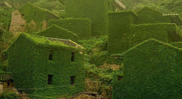 Шенгшань, Китай - Stone Forest