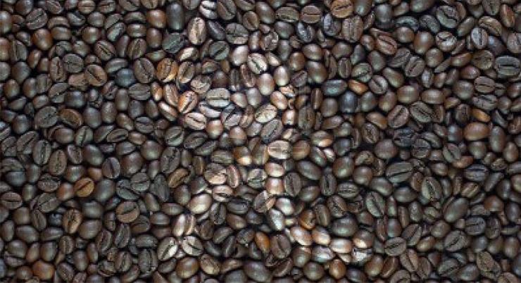 Рисунок на кофейных зернах - Stone Forest