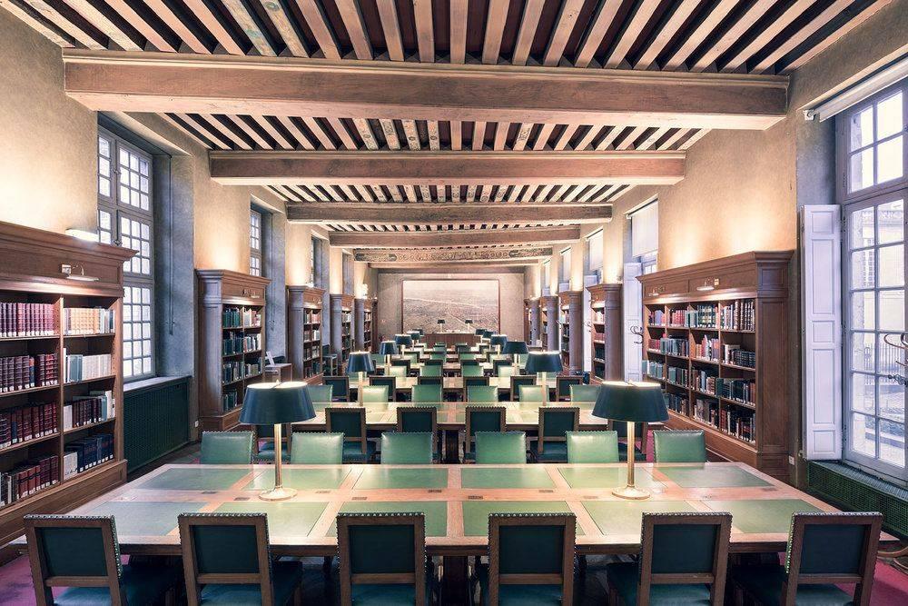 Bibliothèque Historique de Paris - Stone Forest