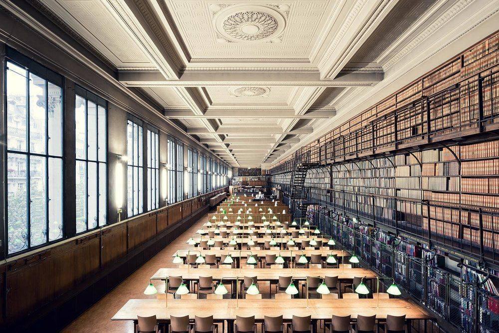 Bibliothèque de Médecine Paris - Stone Forest