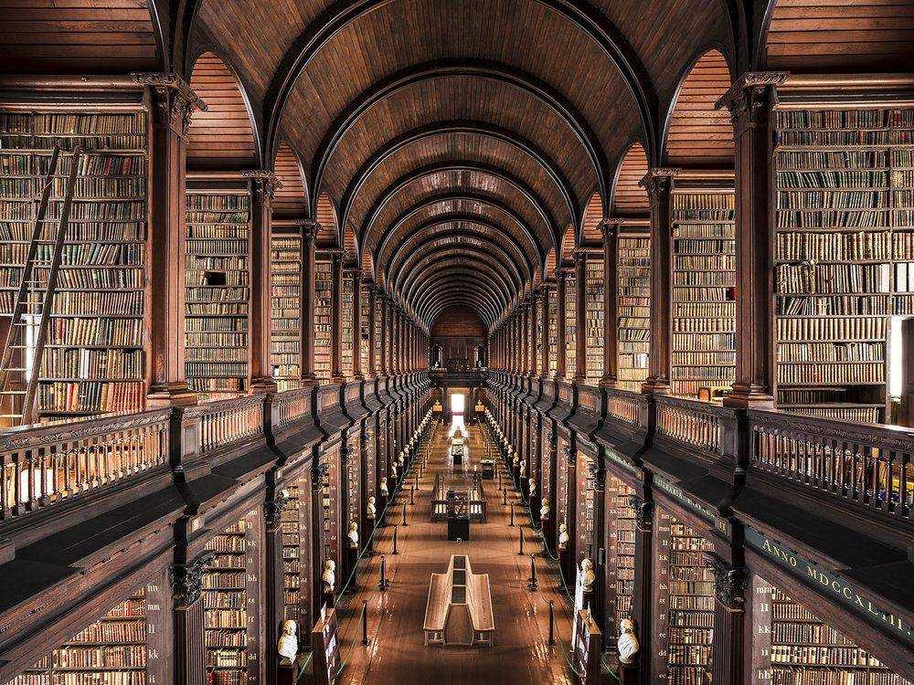 Trinity College Library Dublin 1732 - Stone Forest
