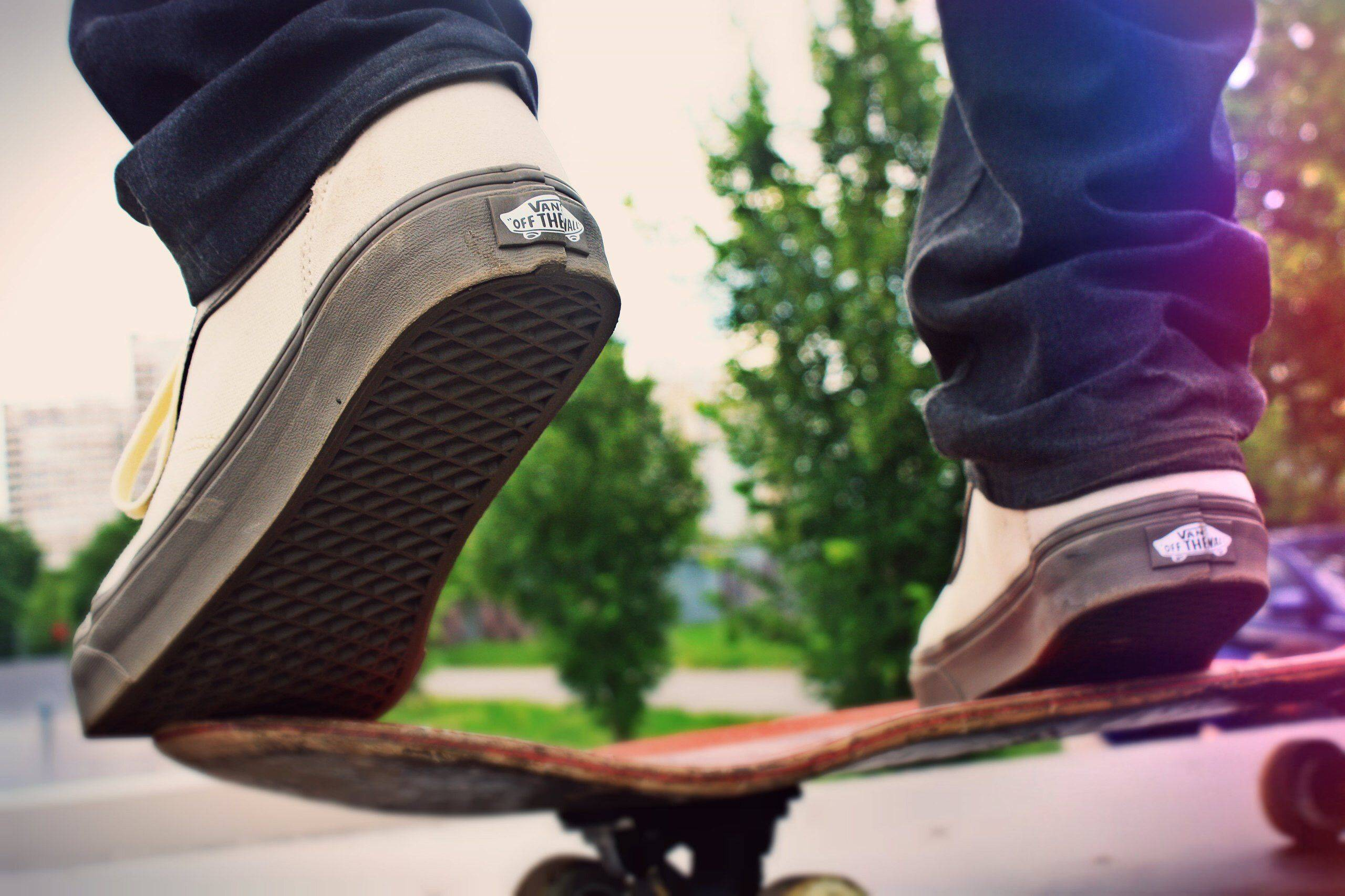 Vans Off The Wall Россия - Stone Forest