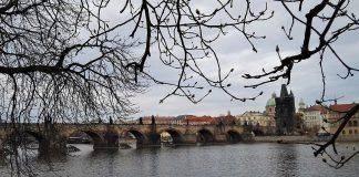 Путеводитель по Праге - Stone Forest
