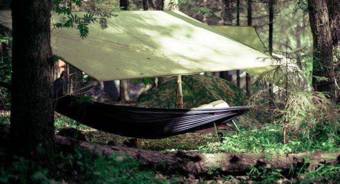 Подвесные кровати в лесу - Stone Forest