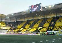 Футбольный клуб Янг Бойз Берн Швейцария - Stone Forest