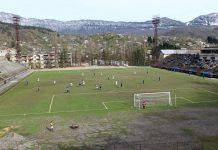 Groundhopping - Stone Forest