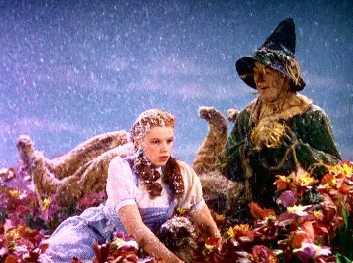 Съемки фильма Волшебник из страны Оз - Stone Forest