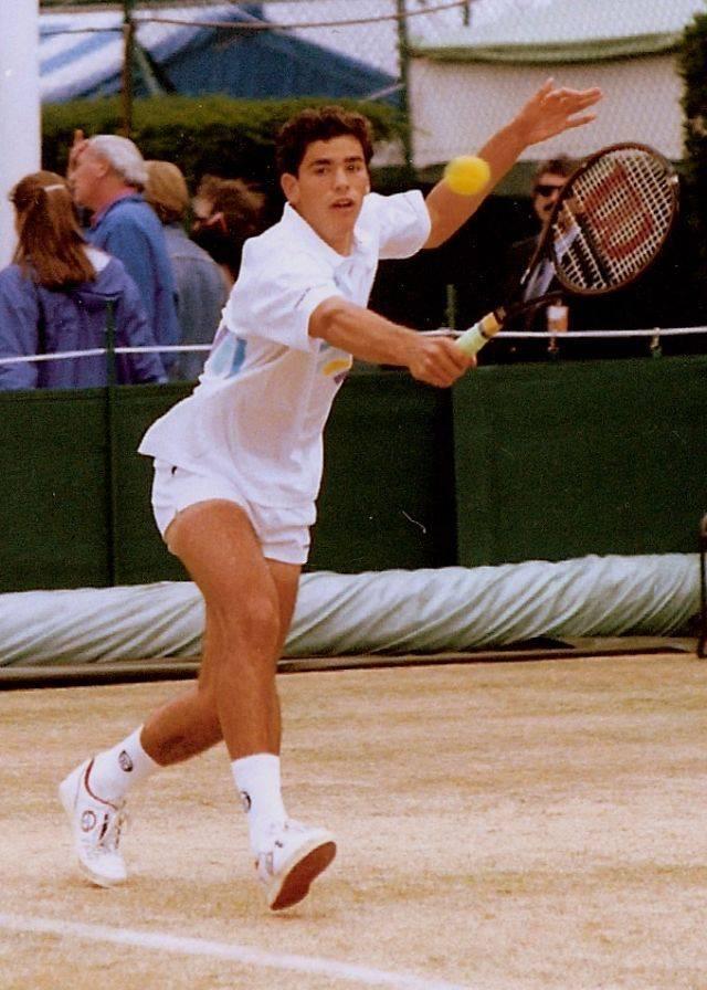 Теннисист Пит Сампрас - Stone Forest