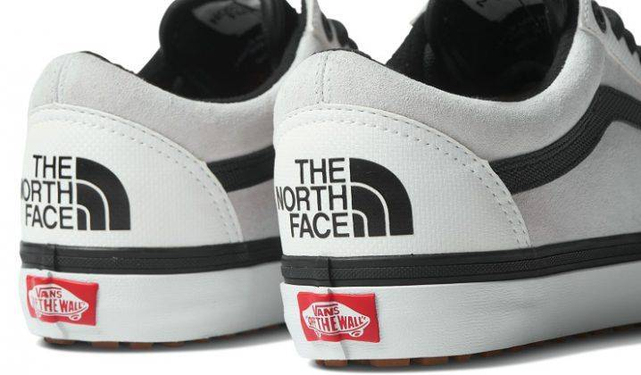 Обувь Vans x The North Face - Stone Forest