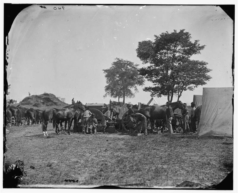 Сражение при Энтитеме в США - Stone Forest