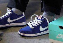Nike SB Dunk Low - Stone Forest