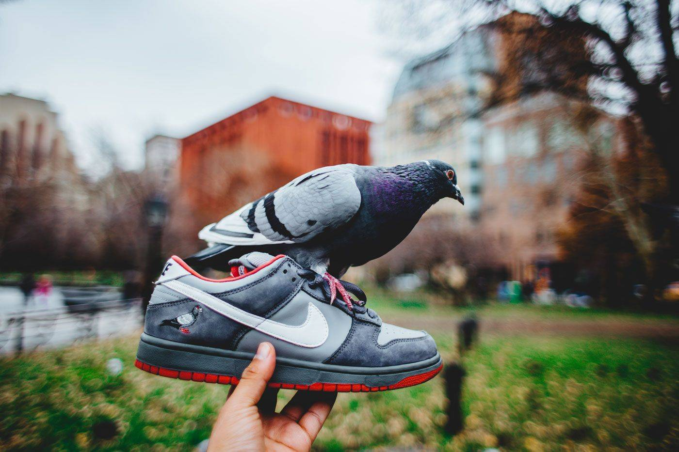 Модель Nike SB Dunk Low - Stone Forest