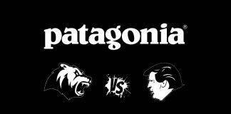 Patagonia vs Дональд Трамп - Stone Forest