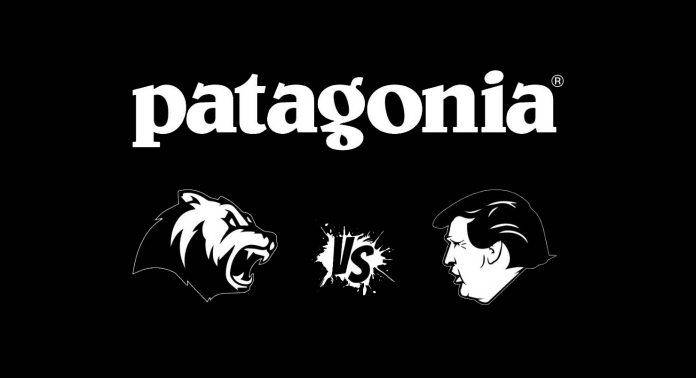 Patagonia vs Дональд Трамп - Stone Forest