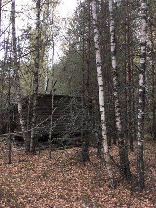 Заброшенный дом в русской глубинке - Stone Forest