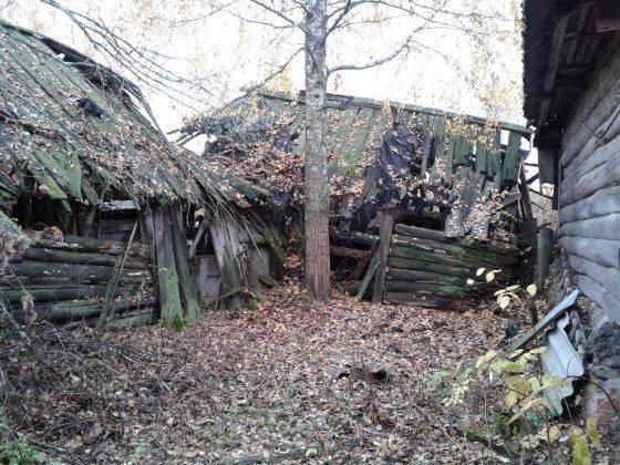Заброшенный дом - Stone Forest