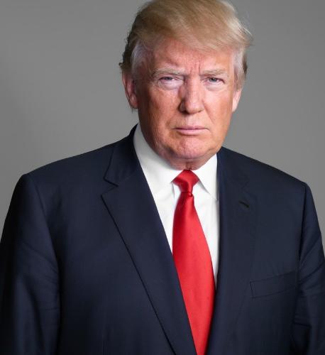 Дональду Трампу 72 года - Stone Forest