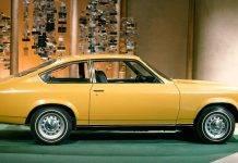 Chevrolet Vega - Stone Forest