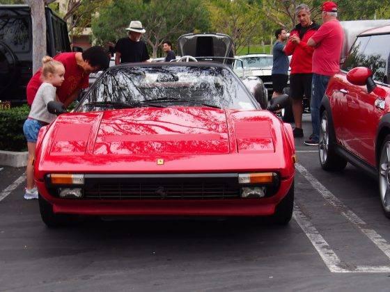 Ferrari 308 GTSi - Stone Forest