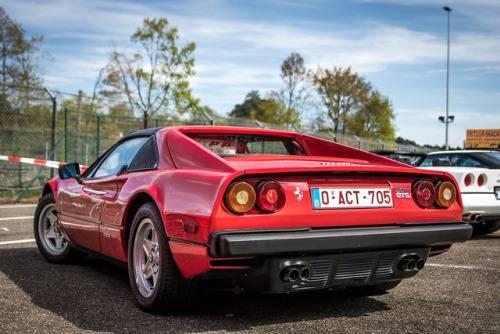 Автомобиль Ferrari 308 GTSi - Stone Forest