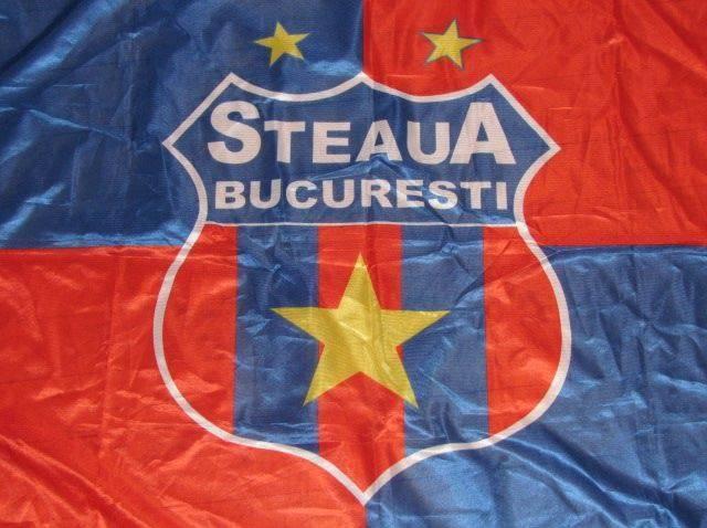 Лого Стяуа Бухарест - Stone Forest