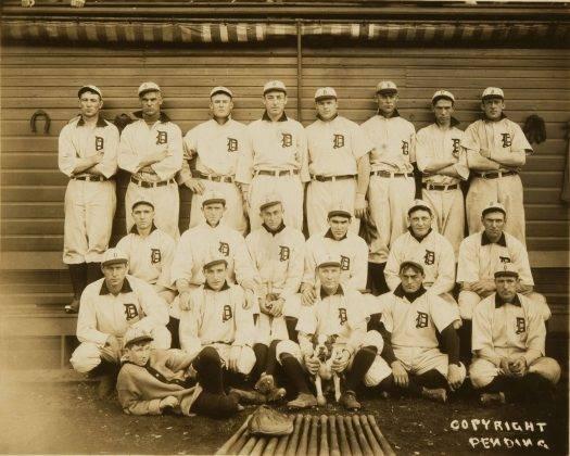 Бейсбольный клуб Детройт Тайгерс - Stone Forest