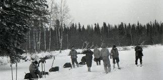 Трагедия перевала Дятлова - Stone Forest