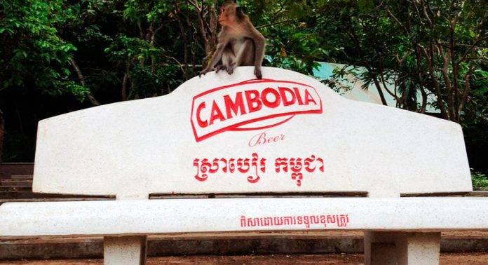 правильный отдых в камбодже