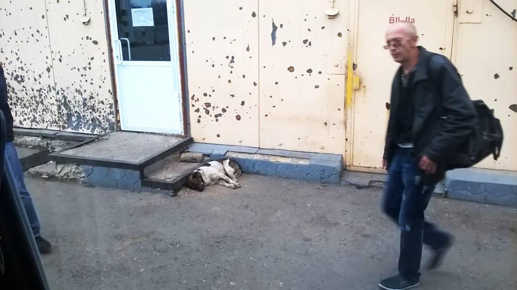 Поездка в Донецк в 2015 году, обстрелянная КПП