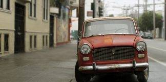 Fiat 1100 - Stone Forest