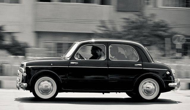 Модель Fiat 1100 - Stone Forest