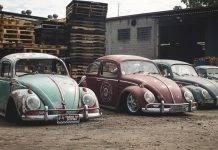 Volkswagen Beetle - Stone Forest