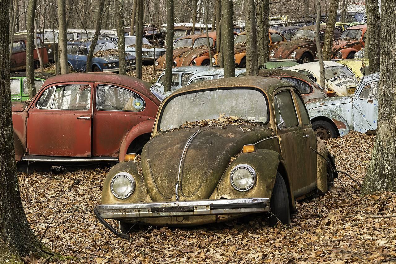 Авто Volkswagen Beetle - Stone Forest